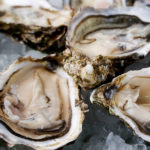 Oysters – Medium to Large (Australia)